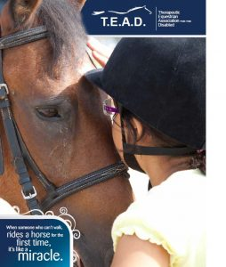 TEAD Brochure - Cover Page